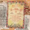 Guadaloop Vs Smokonut @ Tomorrowland 2017 (B2B Stage - The Cage)