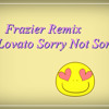 Frazier Remix Demi Lovato Sorry Not Sorry