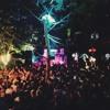 Niko Schwind @ Wilde Möhre Festival 2017