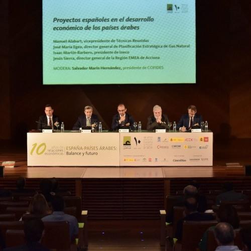 Proyectos españoles en el desarrollo económico de los países árabes (3/6)