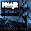 DISHWALLA - COUNTING BLUE CARS (COVER)