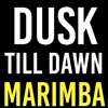 Dusk Till Dawn Marimba Ringtone - Zayn Malik ft. Sia
