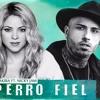 Shakira perro fiel mp3 Song download