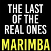 The Last Of The Real Ones Marimba Ringtone Fall Out Boy Mp3