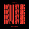 How Long (Revelries Remix)
