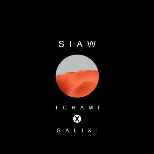 Tchami - SIAW (Galixi Remix)