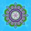 MYSTICISM - Shakuna Vimana - Free Earth Festival Pre-Event - 07.10.17