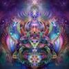 Spellbinding Gyrations live DJ set at Rhythm Sanctuary 11/16/17