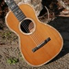 "1890s George Bauer ""presentation"" parlor guitar"