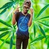 d-clan-rap-present_z-setia-ko-mendua.mp3