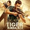 Swag Se Swagat Song _ Tiger Zinda Hai _ Salman Kha.mp3