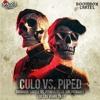 Culo Vs. Piped  - Boombox Cartel Vs. Pitbull Ft. Lil Jon (Remake EDC Las Vegas 2K17).