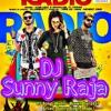 "Radio Feat. Brown Gal, King Kazi | New DJ Songs 2017"" DJ Sunny Raja Nagpur, DJ Harish Nagpur"