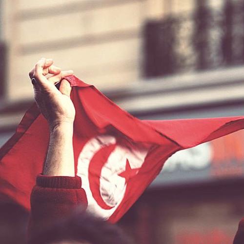 La democracia en Túnez: logros y retos de la transición