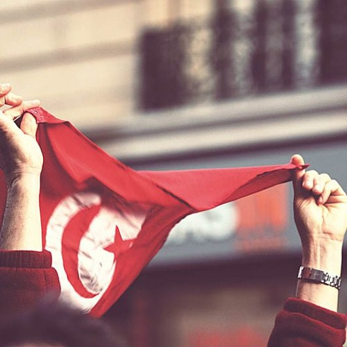 Democracy in Tunisia: The transition's achievements and challenges (ARABIC)