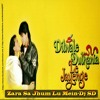 Zara Sa Jhoom Loon Main - [Remix] - Dj Sd
