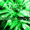 CROSS X STAYNS - 420 (BDAY FREEBIE)