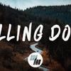 Wild Cards - Falling Down  Ft. James Delaney/tamimfarhan7@gmail.com