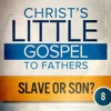 SLAVE OR SON?   |   Embracing the Child 8