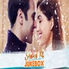 Sanam Re - Remix
