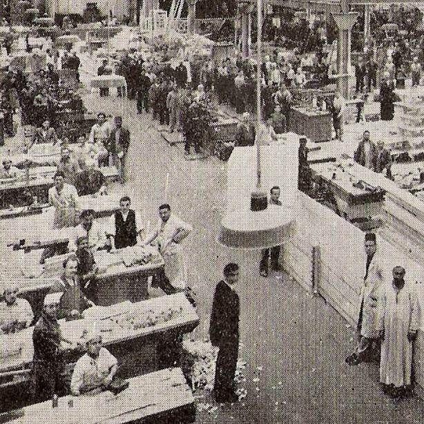 Industrial Sexualities in Twentieth-Century Egypt | Hanan Hammad