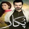 Here Is Pukaar OST (song) By Shuja Haider  ARY DIGITAL  Drama Bazaar  Episode