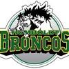 Humboldt Broncos Playoff Warmup Mix 2018