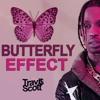 Butterfly Effect (Lucas Ze Cat REMIX)