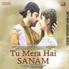 Tu Mera Hai Sanam - MyMp3Song.org
