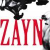 Let me- Zayn  (RTM Cover)