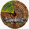 03 Tropical Forest - Nature Scene Feat Conrad Good Vibration