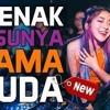 DJ ENAK SUSUNYA MAMA 2018 [ DIJAMIN SUGESTT FULL BASS ]