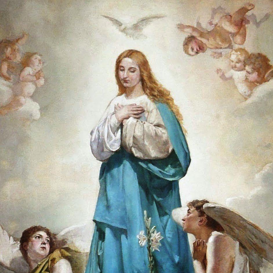 [9a Meditación Novena Inmaculada] – Asunción de María a los Cielos El sí de Jesús