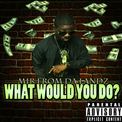 WHAT WOULD YOU DO by Mir From Da Landz
