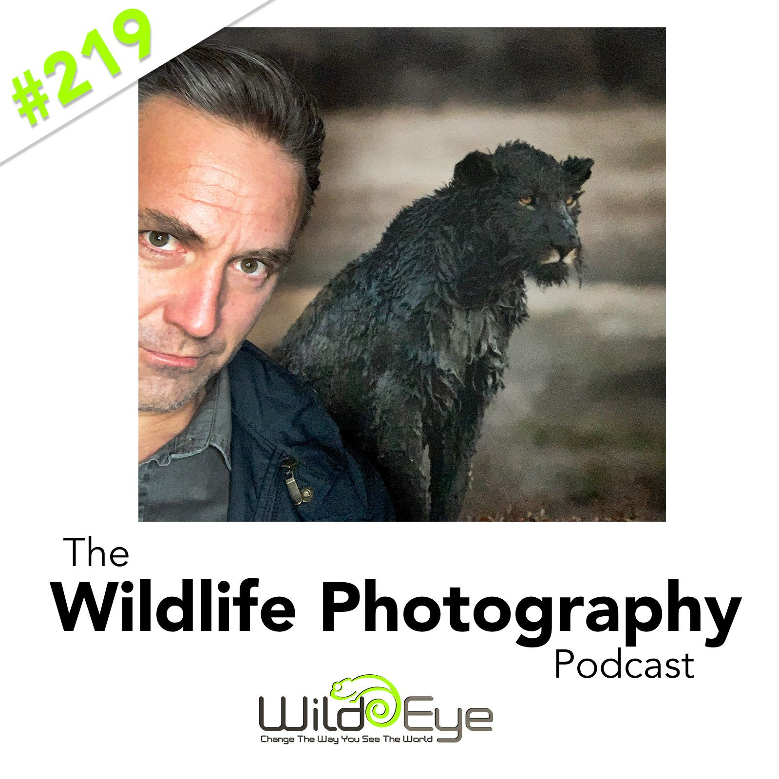 Epiode 219 - The Story Of A Black Muddy Lion - The Wildlife