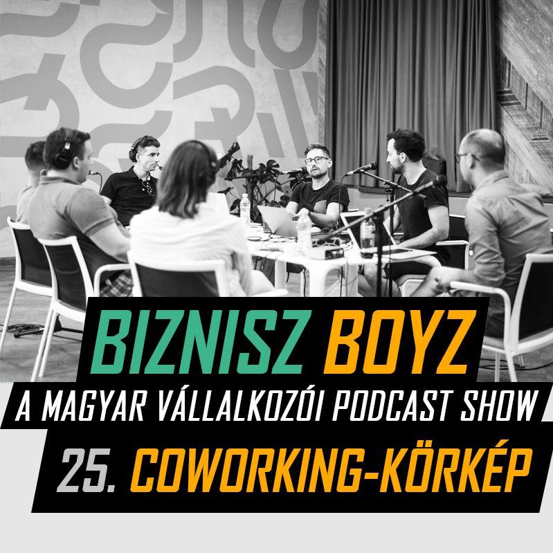 25. A magyar coworking piac titkai | HubHub, Kaptár, ImpactHub, Millenáris Startup Campus