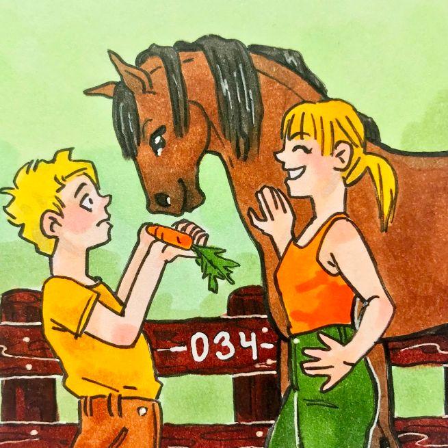 Letní koniny