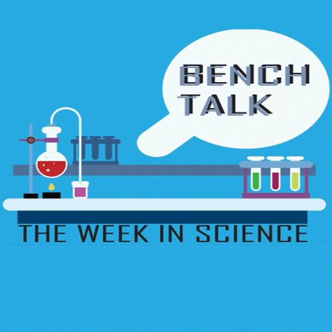 Bench Talk: The Week in Science |  Louisville's Response to Climate Change  | Nov 11 2019
