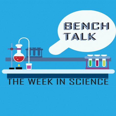 Bench Talk: The Week in Science   Brownfields in Louisvlle (Dr. Allison Smith cont.)   Nov 18 2019