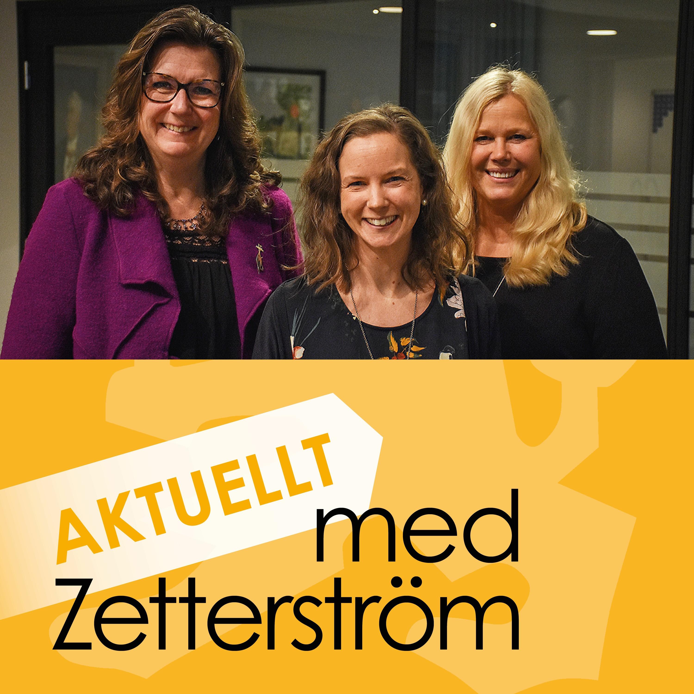 Aktuellt med Zetterström, avsnitt 3, Fadimedagen och hederskultur