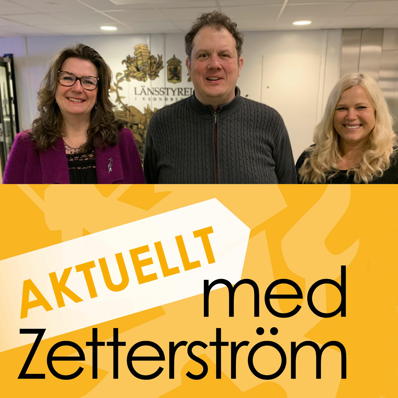 Aktuellt med Zetterström, avsnitt 4: Uppbyggnad av totalförsvaret