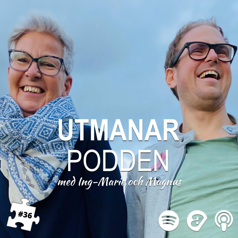 36. Svenskarna och Internet(möten)