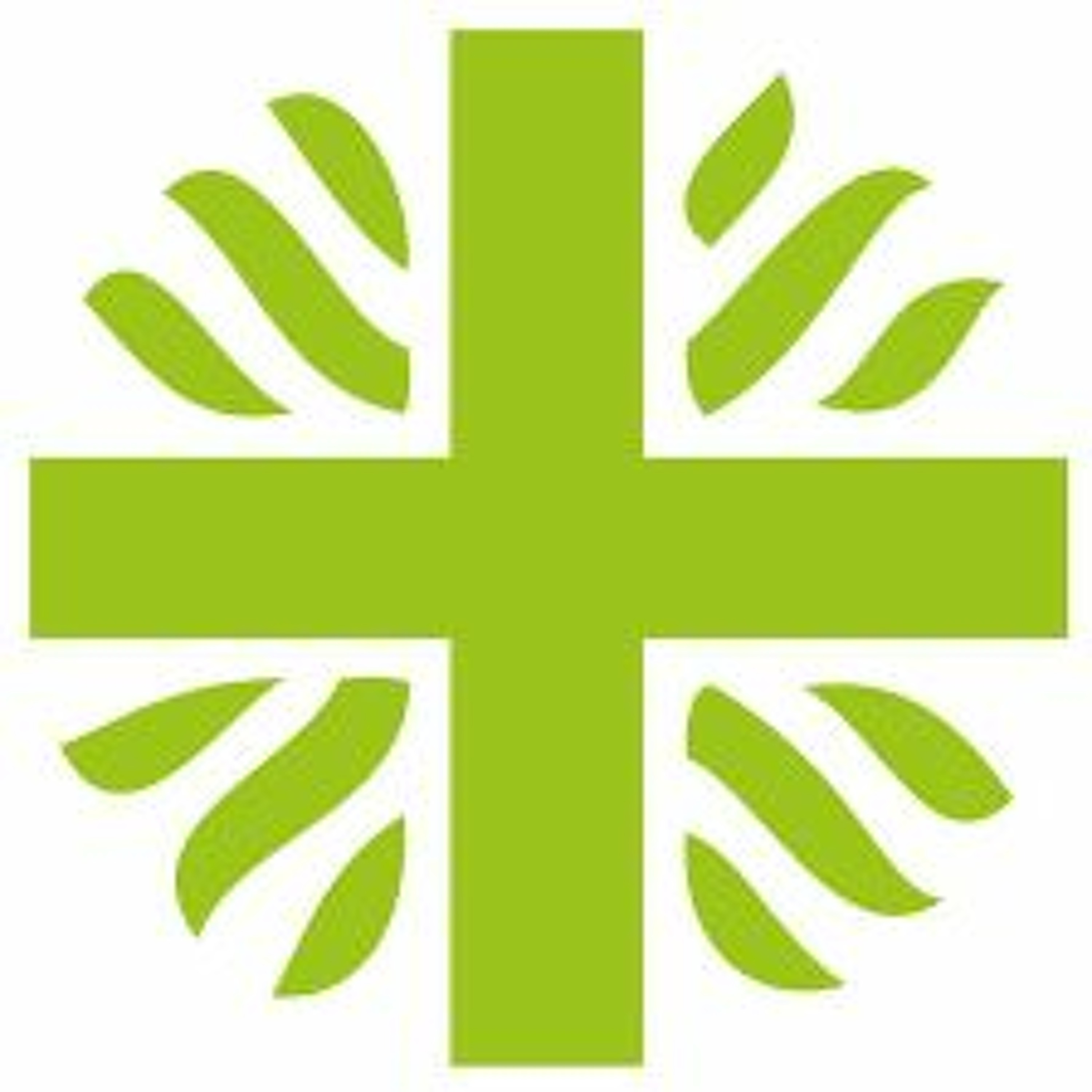 Bible in Action - Stewards of the Earth - Lent week 5