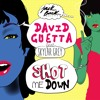Shot me Down (feat. Skylar Grey) (Radio Edit)