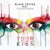 Your Eyes (feat. Shekhinah)