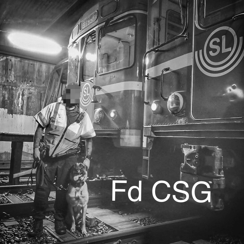(fd) CSG
