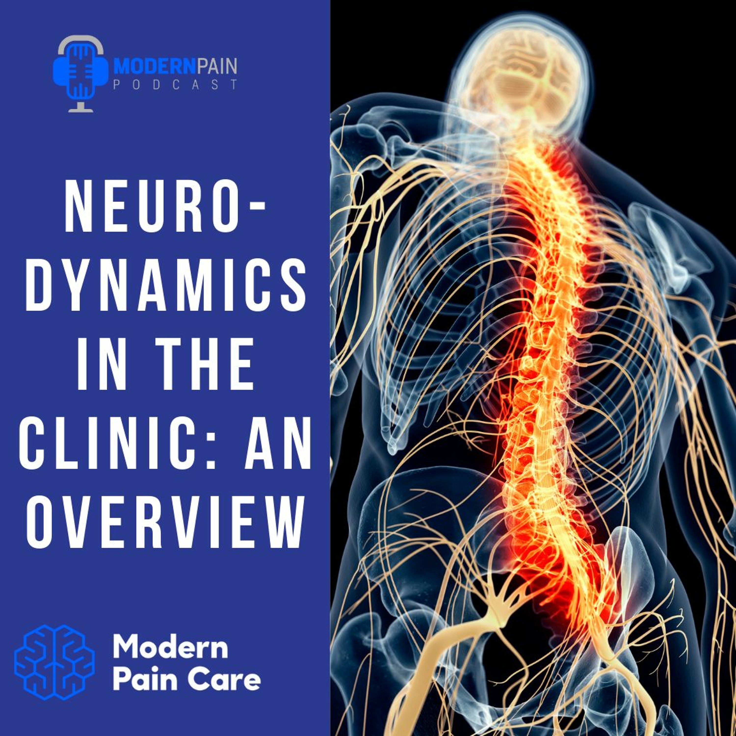 Neurodynamics In The Clinic: An Overview