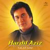 Aaj Dil Beqarrar Sa Kyon Hai (Album Version)