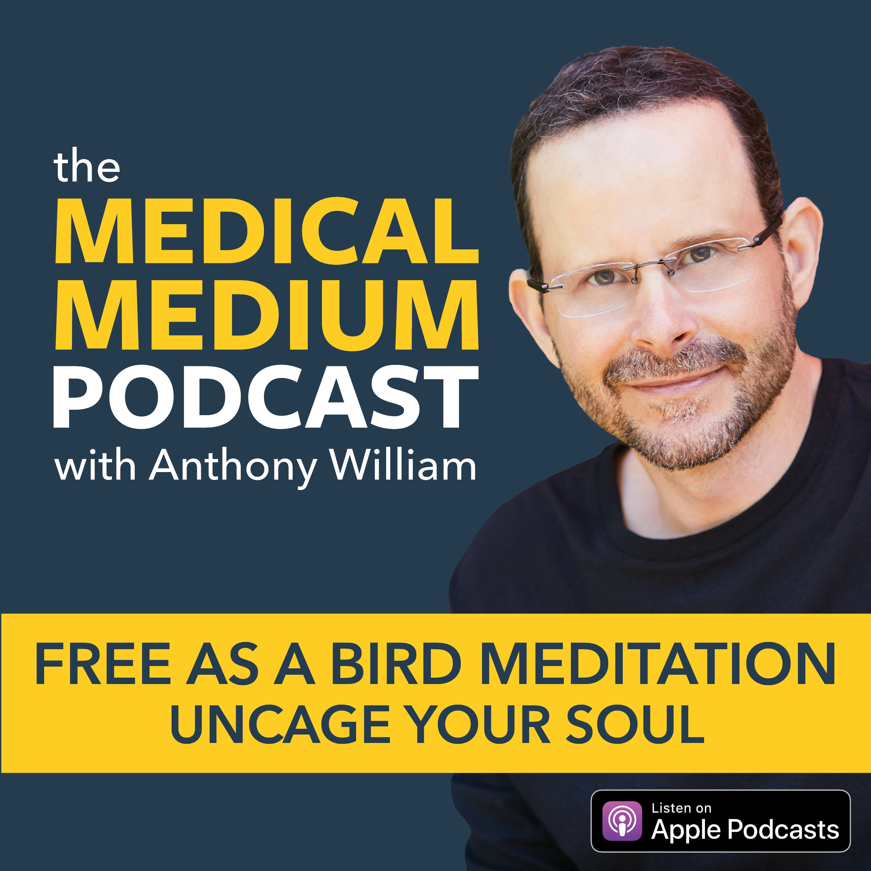008 Free As A Bird Meditation: Uncage Your Soul