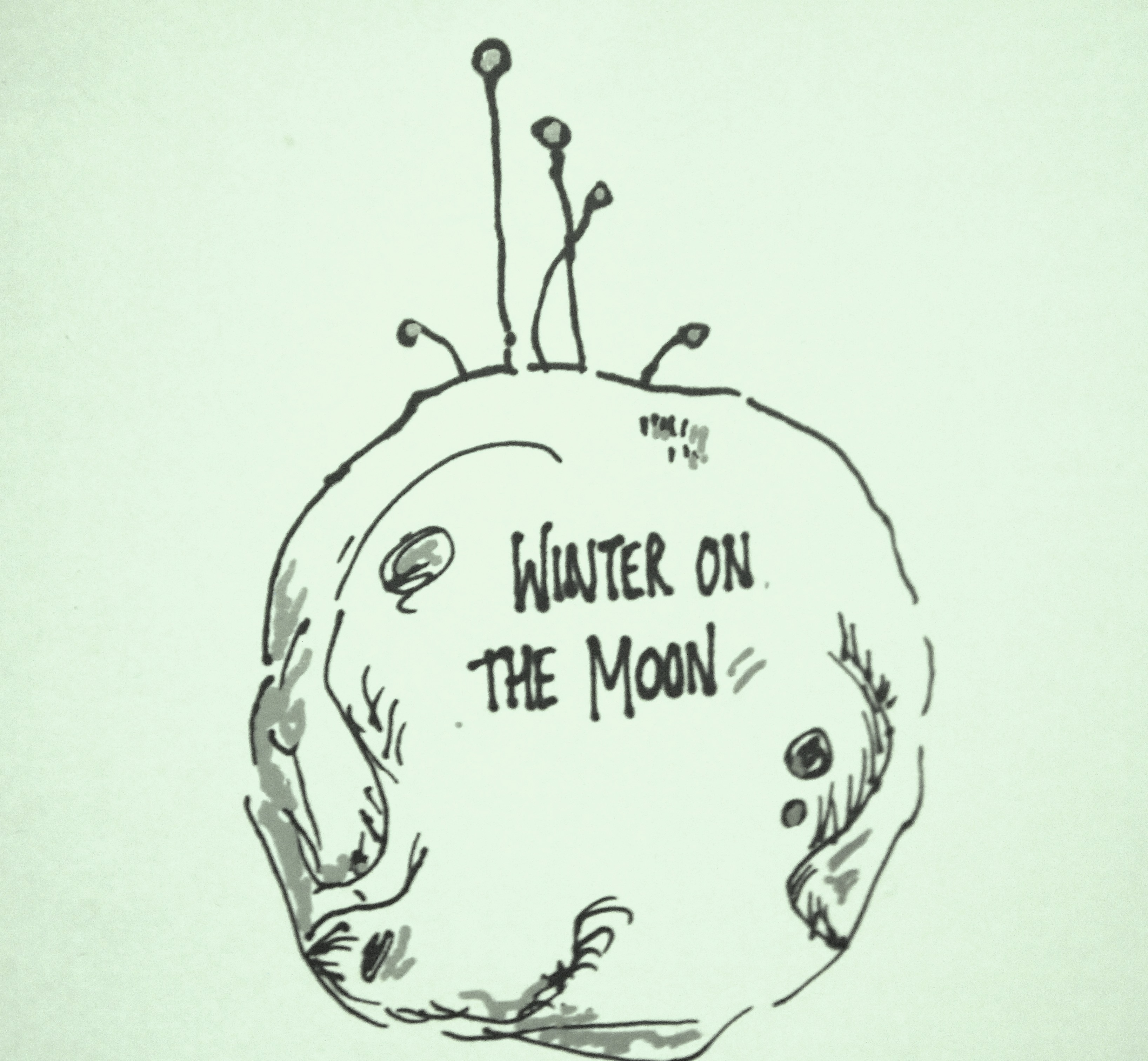 winteronthemoon